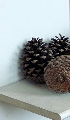 I love everything pinecones!
