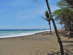 Playa Ostional Costa Rica en Cuajiniquil, Santa Cruz, Guanacaste: informacion, ubicacion, mapa con direccion, coordenadas para GPS, como llegar en autobus o avion, fotos y video.