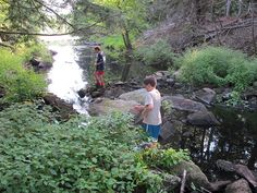 Appalachian Trail-Day 6: Little Dam Lake by Treetop Mom, via Flickr