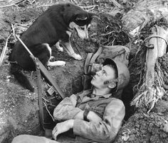The Loyal Dogs Who Served Alongside Human Soldiers In War A U.S. Marine chats with his scouting dog in Guam in August 1944. These dogs were used to track down Japanese soldiers hidden in caves or jungle strongholds, and for running messages.
