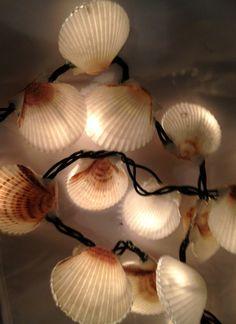 Scallop Shell Christmas Lights