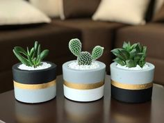 10 Beginner Mistakes when Growing Succulents/Easy Guidelines - The Effective Pictures We Offer You About diy face mask sewing pattern A quality picture can tell - Diy Concrete Planters, Concrete Pots, Diy Planters, Cement Garden, Painted Plant Pots, Painted Flower Pots, Cement Flower Pots, Painted Pebbles, House Plants Decor