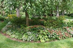 Spring is just around the corner, What plants will you have in your garden this year? youbuyweplant.com 610-500-1210