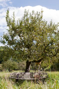 Banc Charivari muscade Fermob #mobilierdejardin #design #jardindesign #exterieur #outdoor #campagne #vacances #apple #pomme #normandie #normandy