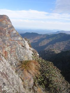 Charlies Bunion, Great Smoky Mountains National Park