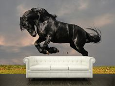 Horse Wall Murals a must have for a new room | living room horse wall murals design