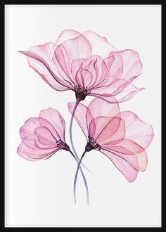 Watercolor Artwork, Watercolor Pattern, Watercolor Flowers, Art Floral, Xray Flower, Purple Rose Tattoos, Flower Art Drawing, Art Deco Decor, Bright Art