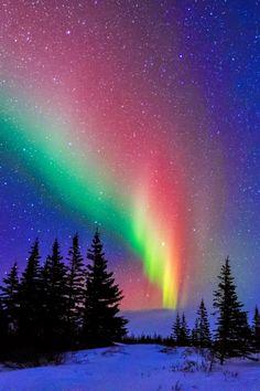 Aurora over Churchill, Manitoba, Canada
