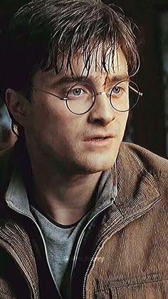 Harry Potter Gif, Harry Potter Videos, Daniel Harry Potter, Young Harry Potter, Daniel Radcliffe Harry Potter, Mundo Harry Potter, Harry Potter Pictures, Harry Potter Characters, Hermione