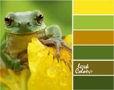 Сочетание зеленого и желтого цвета