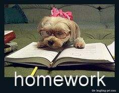 Ugh so much homework that's due tomorrow grrr and so little time pray for me please