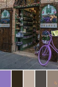 ZJ Colour Palette 400 #colourpalette #colourinspiration