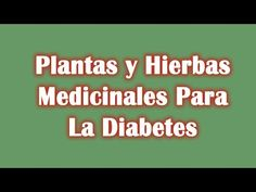 1000+ images about Hierbas medicinales on Pinterest