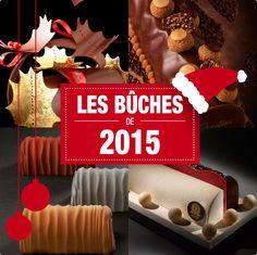 Les plus belles Bûches de Noël de l'année 2015 réalisées par les meilleurs pâtissiers de Paris...