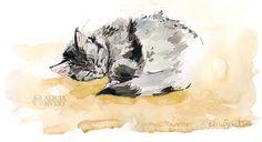 Sleepy Tofslan, watercolour by Alicia Sivertsson.