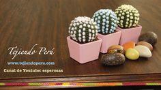 FREE VIDEO TUTORIAL ~ Cactus fantasía amigurumi tejidos a crochet