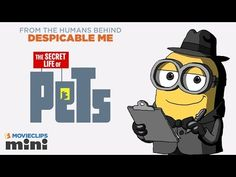 Imagens e trailers da animação 'Pets – A Vida Secreta dos Bichos' - Cinema BH