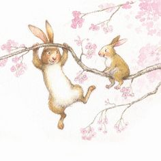 Petra Brown Illustration - petra, brown, petra brown, watercolour, paint, painted, commercial, traditional, trade, picture book, picturebook, animals, rabbits, bunny, bunnies, blossoms, trees, blossom tree