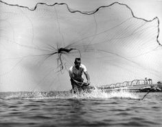 Tom Garrison throws a cast net near Panama City, FL, 1964. Photo by Florida Game and Freshwater Fish Commission.
