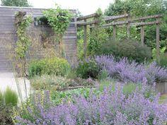 Onderhoudsvrije tuinen - All in Tuinen