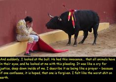 Alvaro Munera, a Colombian bullfighter who could not continue on slaughtering bulls and became an animal rights activist after that fight...