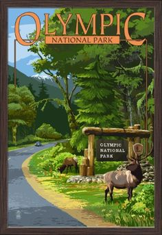 Olympic National Park, Washington - Park Entrance & Elk - Lantern Press Artwork (24x36 Giclee Art Print, Gallery Framed, Espresso Wood), Multi