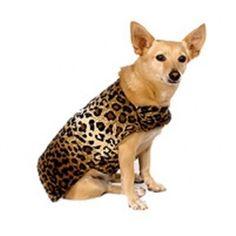 Leopard Skin Lux Dog Coats