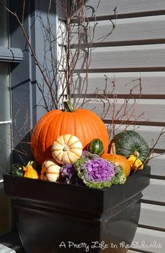 In planter: branches, gourds, pumpkin, etc
