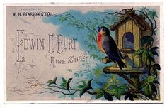 Beautiful Vintage Graphic Image - Robin with Birdhouse - The Graphics Fairy