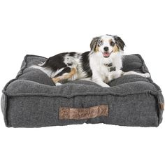 Let your pup indulge in the space they need to comfortably spread out with the Harmony Memory Foam Lounger Dog Bed from the Harmony Manhattan Lofts Collection. For both style and function this memory foam bed features a faux leather handle. Dog Beds For Small Dogs, Cool Dog Beds, Large Dogs, Best Dog Beds, Memory Foam, Blue Merle, Perros Border Collie, Border Collies, Large Dog Crate