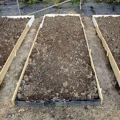 Raised Garden Beds - 5 Tips for Raised Bed Gardens - Popular Mechanics - thanks @Kalene Larson