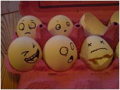 Who knew eggs could be this amusing?