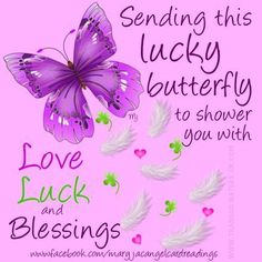 Lucky Horseshoe - Lucky Butterfly - Wishing Fairy - Good luck Angel - Luck - Wishes - Image quotes - Sayings - Good luck - wishes Good Luck Quotes, Good Luck Wishes, Good Morning Quotes, Exam Quotes, Butterfly Quotes, Butterfly Kisses, Blue Butterfly, Lucky Horseshoe, Wishes Images