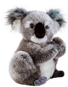 Plush & Company 05932 - Koline Koala Peluche, Altezza 22 ... https://www.amazon.it/dp/B00D1UWD2Y/ref=cm_sw_r_pi_dp_x_.sIBybW3JGNJ3