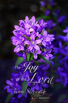 The Joy Of The Lord Is My Strength Photograph by Debbie Nobile Inspirational Bible Quotes, Scripture Quotes, Joy Quotes, Biblical Quotes, Healing Scriptures, Bible Scriptures, Jesus Bible, Bible Notes, God Jesus