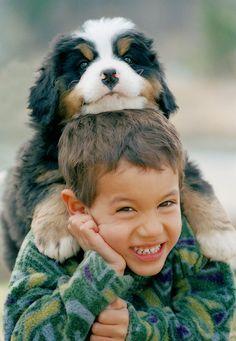 Child with Bernese Mountain Dog puppy on head - ©Anita Dammer and Darwin Wiggett