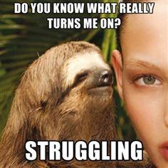 Rape sloth
