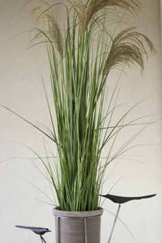 Kalalou Artificial Potted Grass With Natural Reed Small