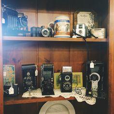 Antique cameras!   #antique #cameras #downtownantiquemall