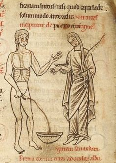 de puero et virgine     Liber medicinae ex animalibus, Netherlands or England 12th century.     British Library, Harley 1585, fol. 72v