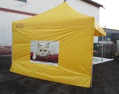 3x8m popup teltta: http://www.stereomeedia.com/fi/galleria/?id=2543