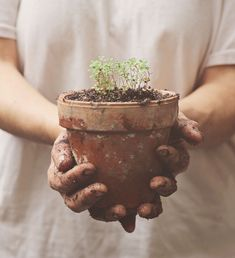 Time to get your hands dirty! // Susan Tuttle Photography