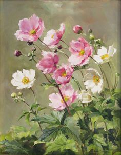 anne cotterill  - Page 2