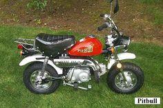 cute Pocket Bike, Honda Jazz, Mini Bike, General Motors, Cars And Motorcycles, Motorbikes, Vehicles, Cute, Wheels