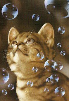 Muramatsu Cat 26 --Not available   Flickr - Photo Sharing!