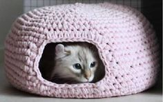 You are going to love this Crochet Cat Cave Free Pattern and it's just one of many awesome ideas in our post. Check out all the versions now. Knitting For BeginnersKnitting HumorCrochet PatternsCrochet Stitches Blog Crochet, Chat Crochet, Crochet Mignon, Crochet Gratis, Crochet Basics, Free Crochet, Easy Crochet, Crochet Cocoon, Crochet Dolls