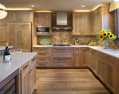Contemporary Kitchen Hickory Cabinets Contemporary Design, Pictures, Remodel, Decor and Ideas - page 2