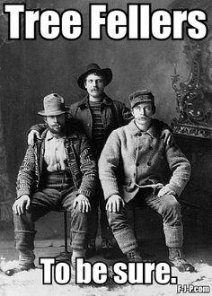 Tree Fellers | Irish Lumberjacks Pun