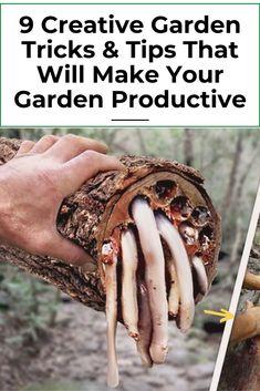 9 easy DIY IDEAS FOR YOUR GARDEN garden ideas, gardening ideas, gardening for beginners, gardening design, gardening tools, gardening hacks, gardening and landscape, gardens and gardening ideas #gardens #gardenhacks #gardeningideas
