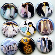 I Love Penguins pinback button set by Yesware11 on Etsy!